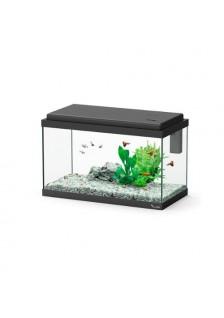 Aquarium Enfant Funny Fish...