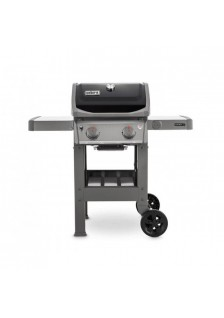 Barbecue spirit E310